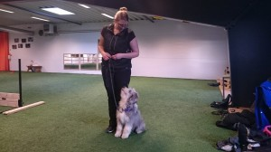 Yxi and me training obedience